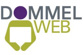 logo dommelweb